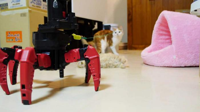 Robot plays with kittens